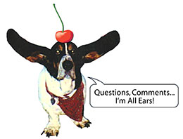 Questions, comments? I'm all ears!